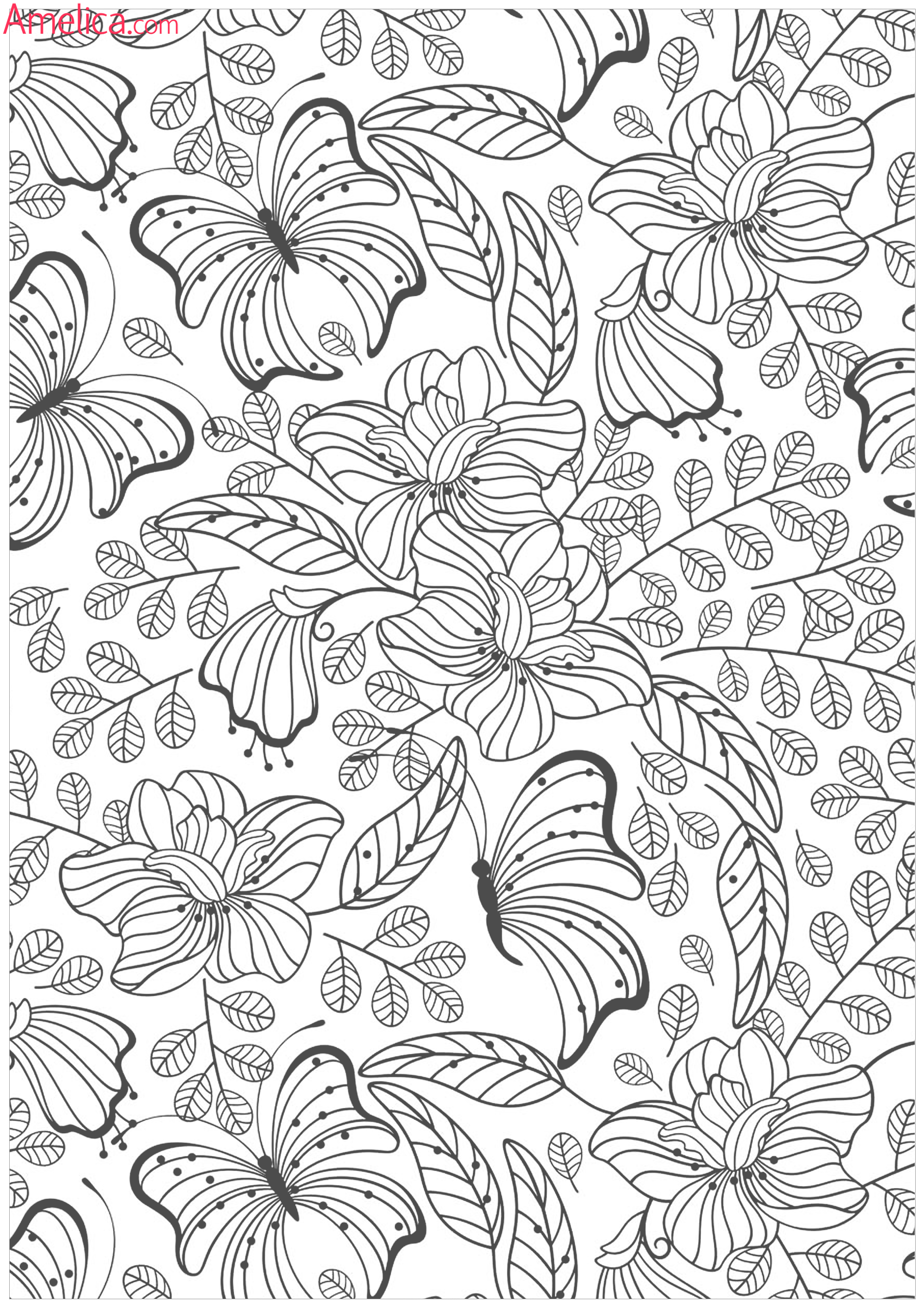 The Botany Coloring Book By Paul Young Pdf Download Free