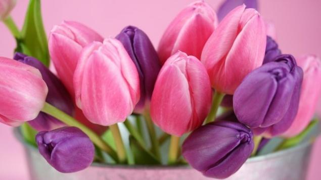 Новый конкурс! Цветочное рукоделие! Весна 2015