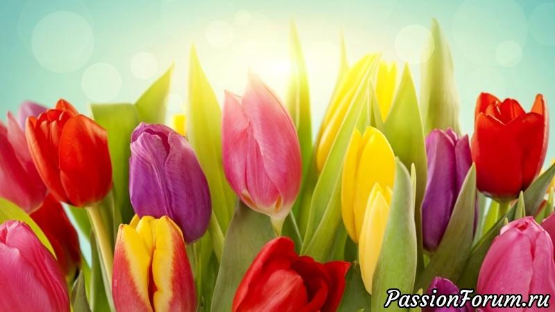 Новый конкурс! Опять Весна, опять Цветы, опять сбываются Мечты!