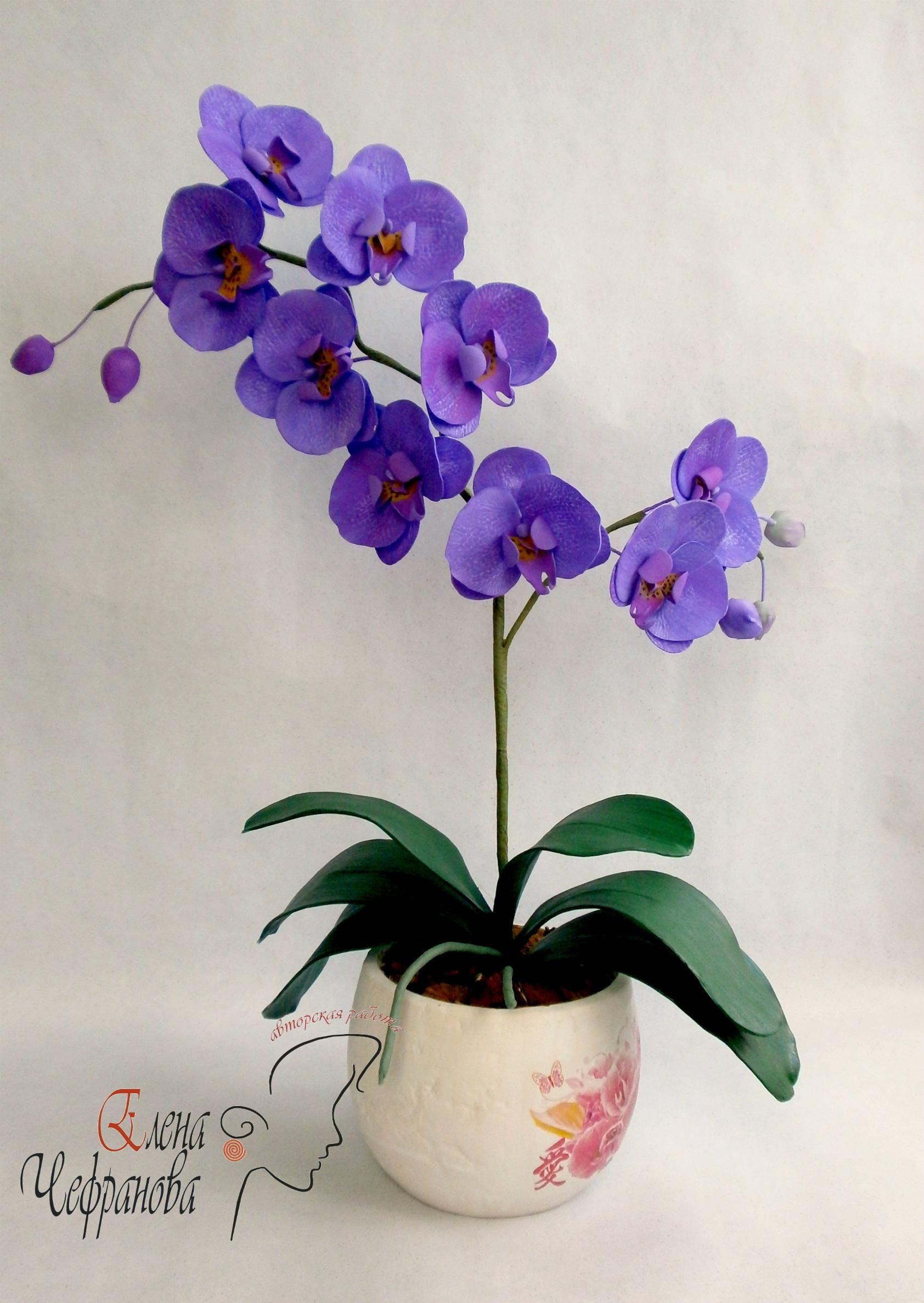 Орхидея из фоамирана своими руками мастер класс фото 561