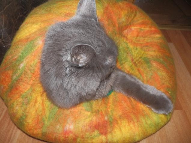 Кошкин дом-2 или тыква от Золушки.