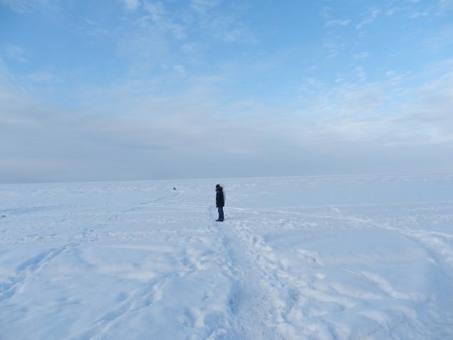 Наслаждение зимушкой-зимой в январский, морозный выходной!!!!