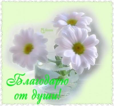 http://www.passionforum.ru/upload/041/u4107/024/bf863efb.jpg