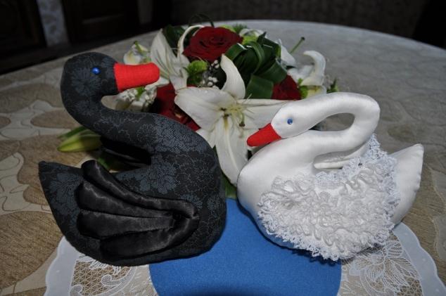 Лебедь белая.