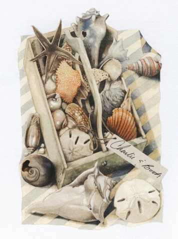 Картинки с морем и ракушками 1