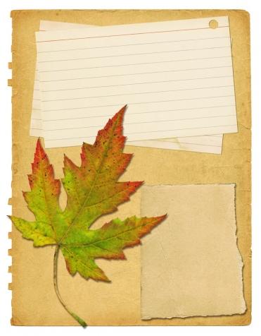 Осенняя бумага.