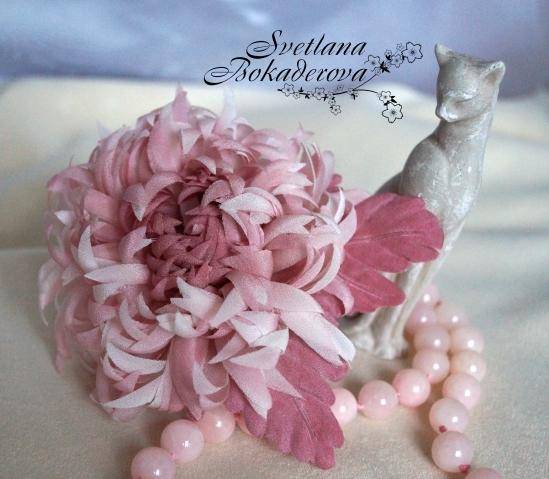 Мои хризантемы )