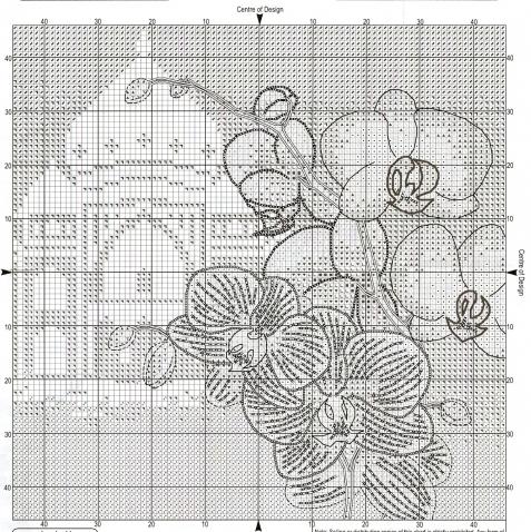 Орхидея Фаленопсис 2 / Вышивка