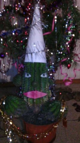 Новогодний кактус