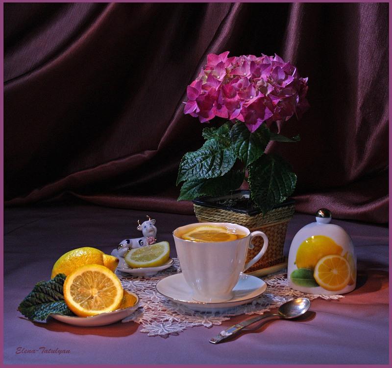 http://www.passionforum.ru/upload/062/u6208/039/96d63e9c.jpg