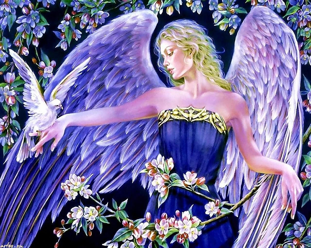 Смотреть бесплатно фото марты амур ангел 13 фотография