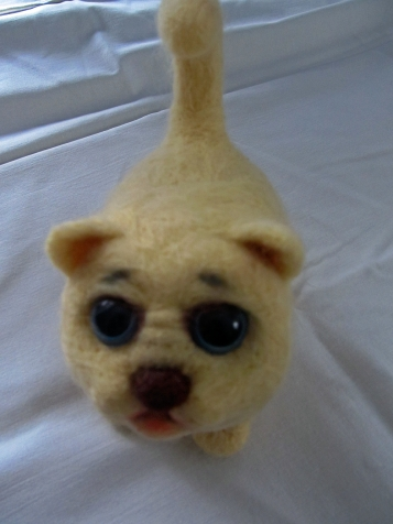 Котёнок Чуня