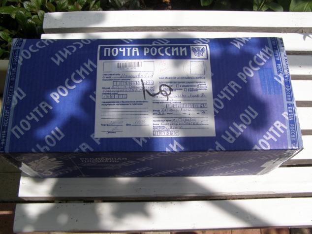 Спасибо тебе, Владычица Морская!))))))))
