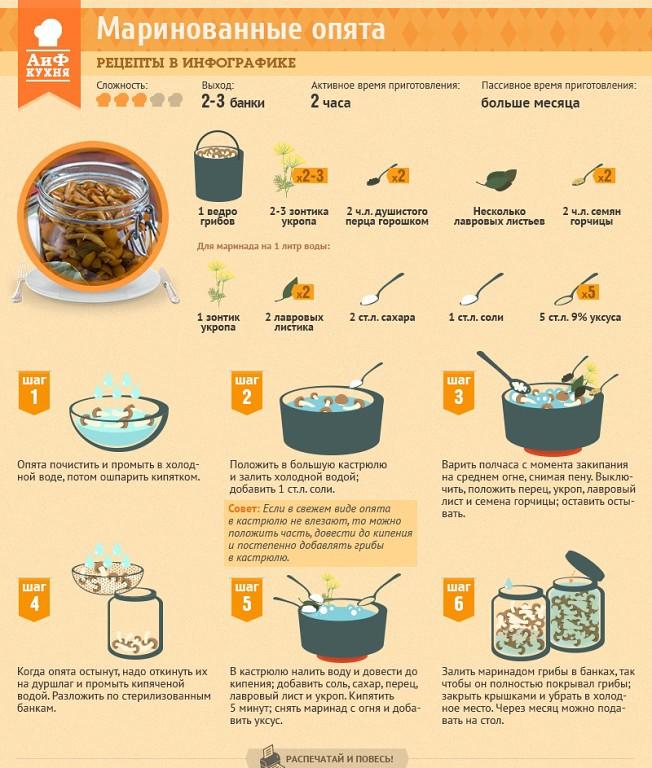Как приготовить грибы на зиму рецепты