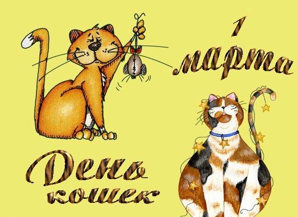 С праздником, дорогие кошковладельцы!