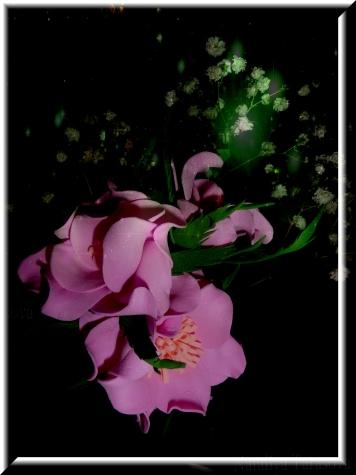 Цветочки...а на дворе зима...