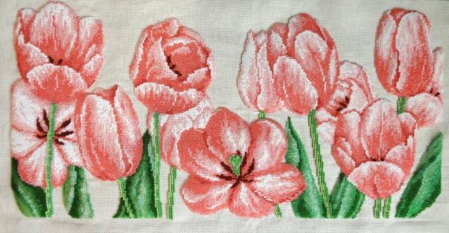 Нежные тюльпаны.