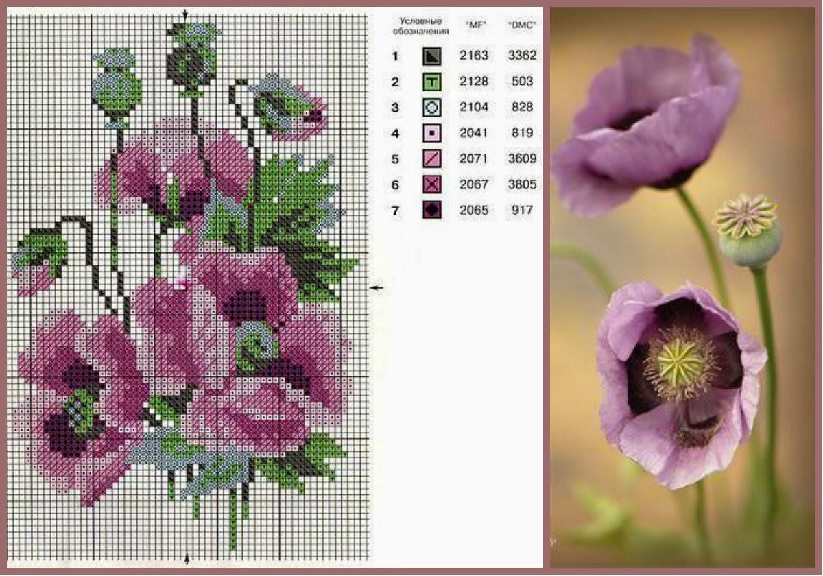 Схема вышивки маки в цвете