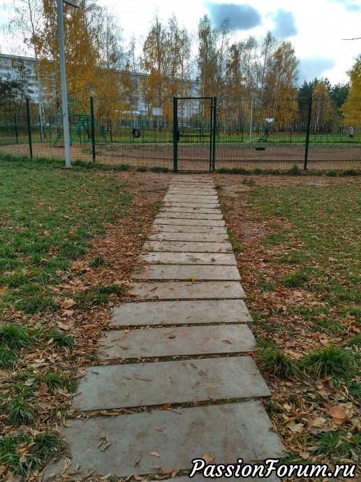 Проходим мимо площадки, где выгуливают собак
