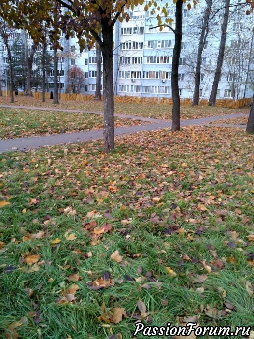 Ходили шуршали листьями