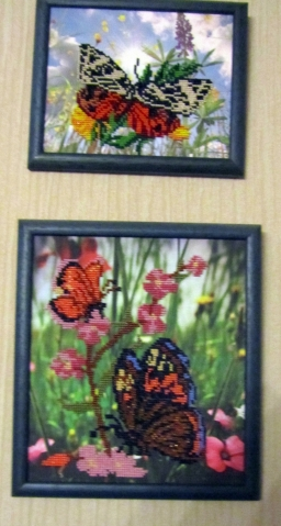 Бабочки, маки и цветы