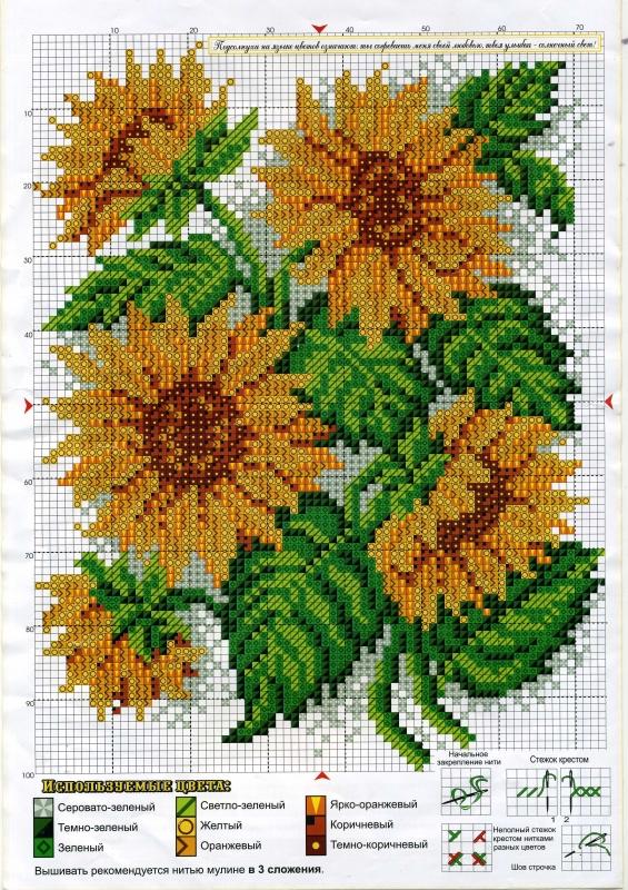 Предыдущие схемы цветов