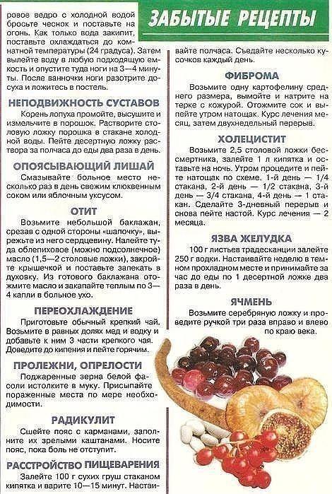 народные рецепты для увеличения бюста отзывы