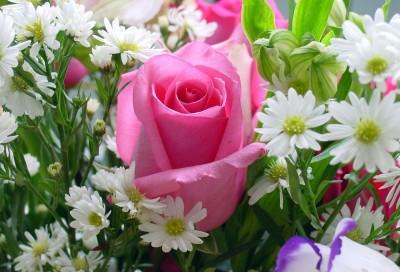 http://www.passionforum.ru/upload/290/u29018/005/b8d2a6b9.jpg