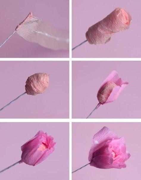 Цветы из бумаги своими руками фото схемы