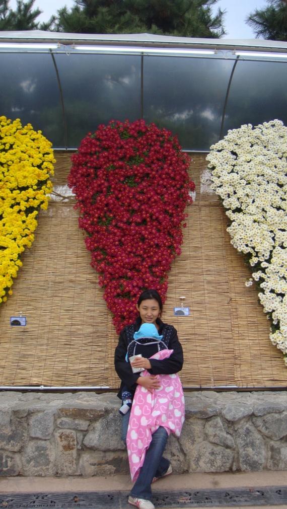 Южная Корея. Фестиваль цветов и бабочек,город Хампёнг.