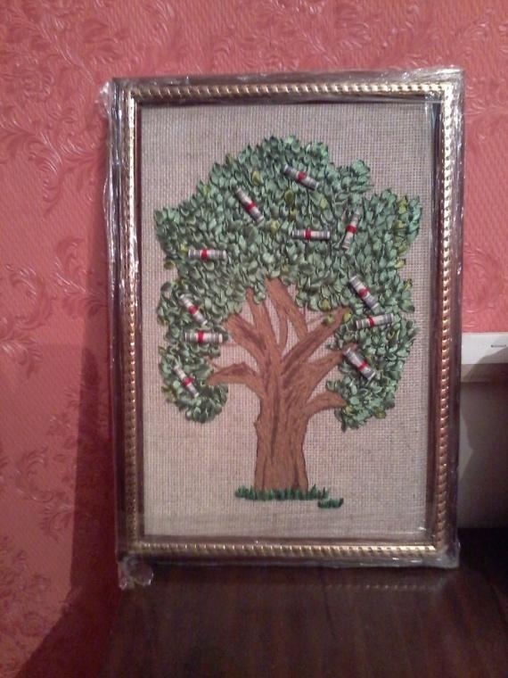 Доларовое дерево