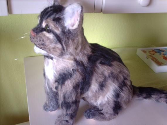 кот по фотографии