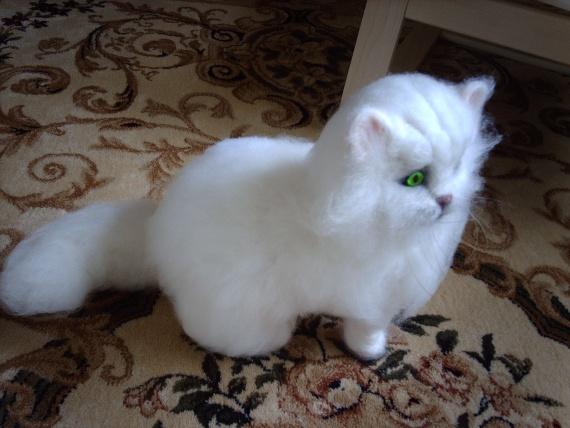 Котик Снежочек