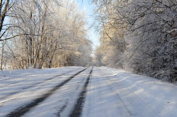 Я покажу вам нашу зиму!