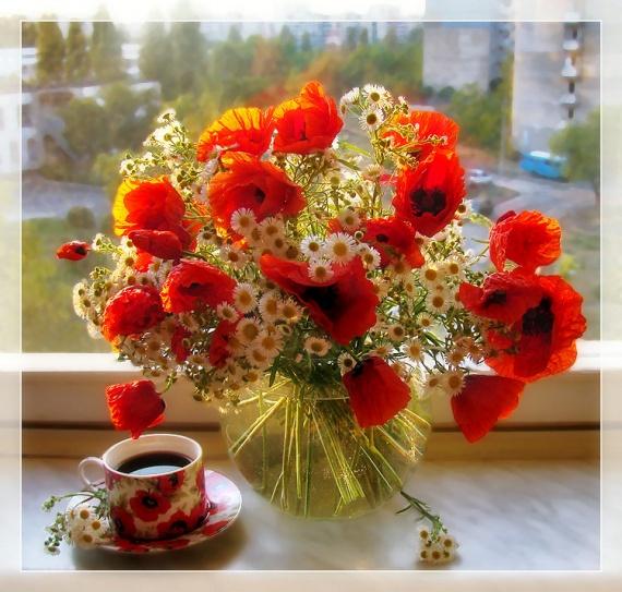 Сегодня, 24 марта, день рождения у Натальи (Tigriska) г.Караганда!
