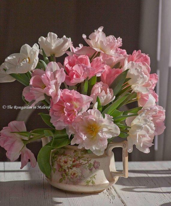 Cегодня, 2 июня, день рождения у НАТАЛИИ (char1949) г.Тверь и у НАТАЛЬИ (Natali_Lion) Украина!