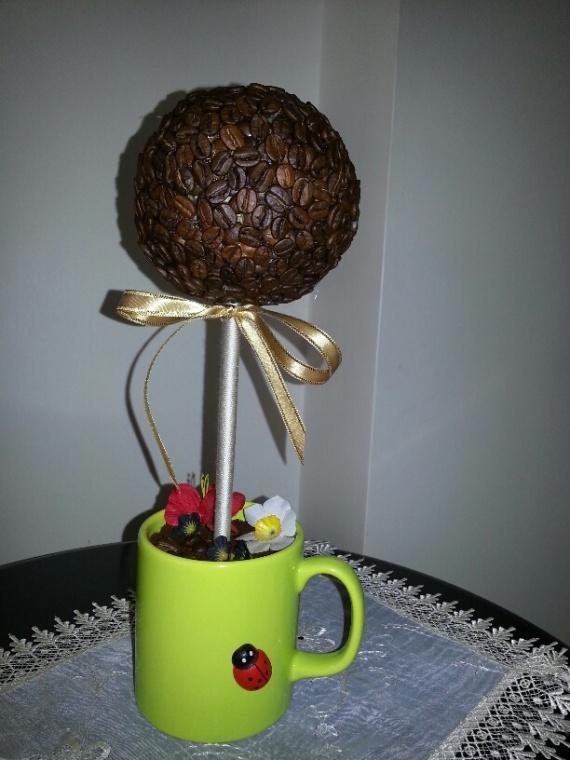 Моё первое кофейное деревце.