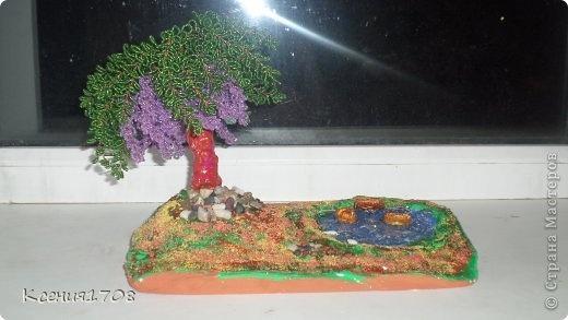 Мои деревья