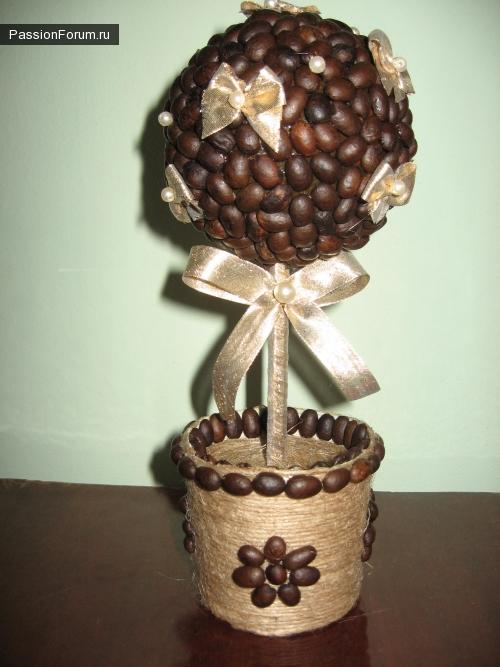 Кофейные деревца.