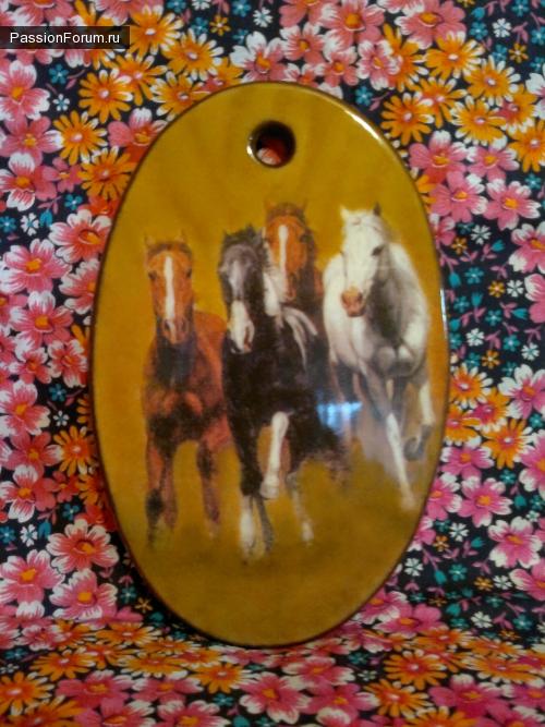 Мои лошадки.