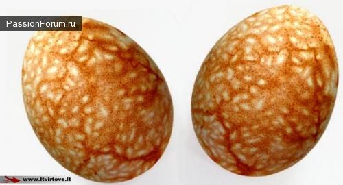 Как красиво покрасить яйца шелухой лука (продолжение)