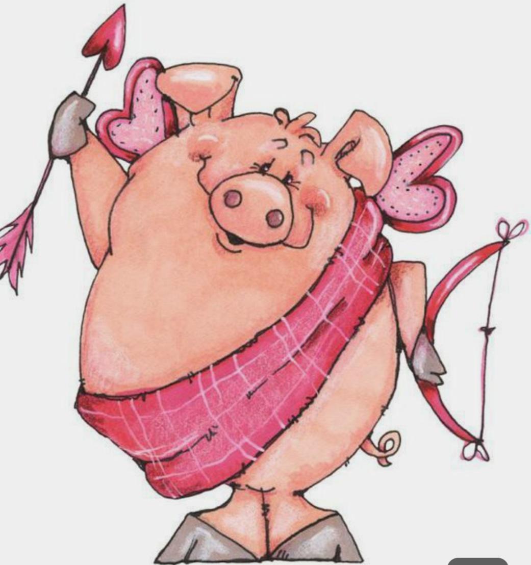 Любви, свинки картинки прикольные нарисованные