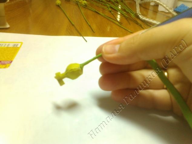 Делается это двумя руками, но я могу показать только по одной. Такое должно быть положение полоски фома и стебля. При накручивании фом между пальцами нагревается и легко натягивается.
