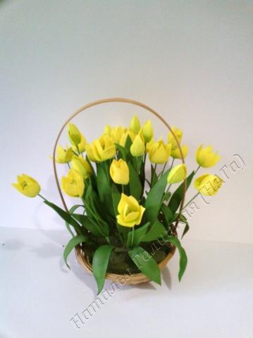 Вот такая корзина подснежников-тюльпанов (у нас их называют гусиный лук) получается.