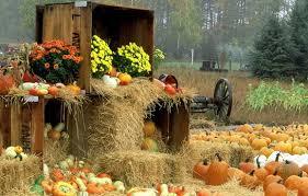 Пословицы и поговорки о сентябре Лето со снопами - осень с пирогами. В сентябре одна ягода, и та - горькая рябина. Холоден сентябрь-батюшка, да сыт. Август варит - сентябрь на стол подает. В сентябре огонь в избе и в поле. Осенью и воробей богат.