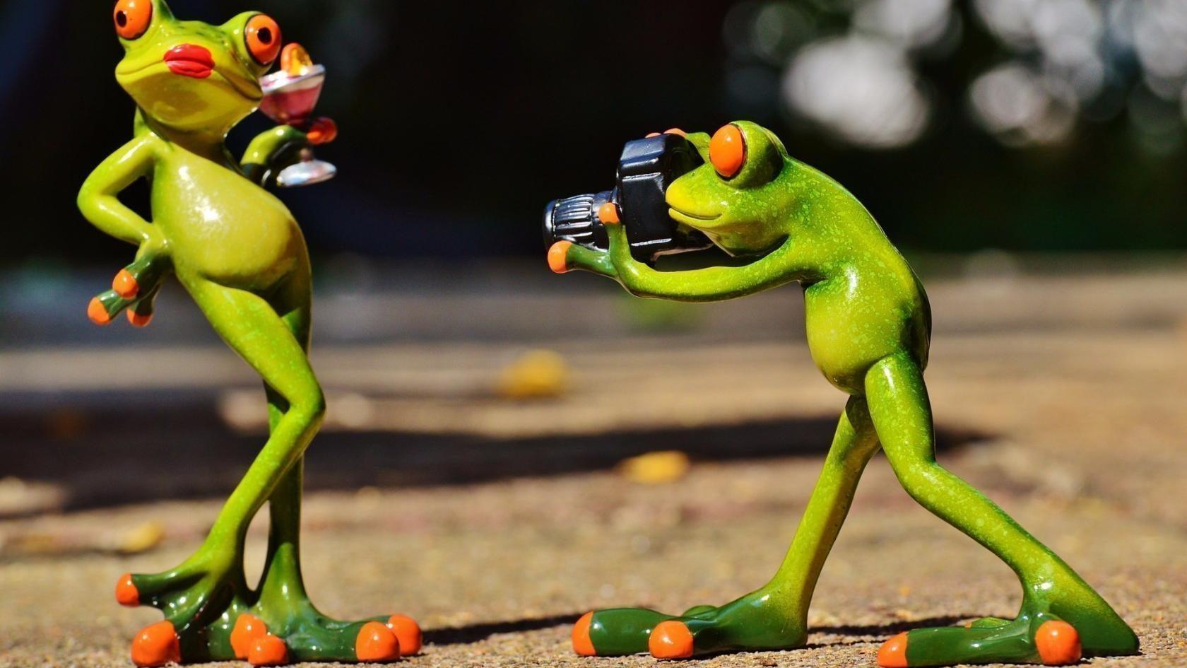 Лягушонок путешественник прикольные картинки, открытки