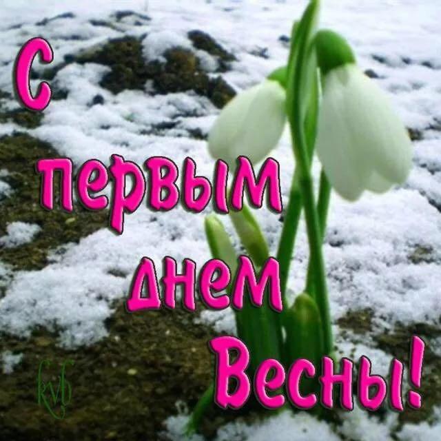 козырьков, поздравление с русской весной тебя, буду всю