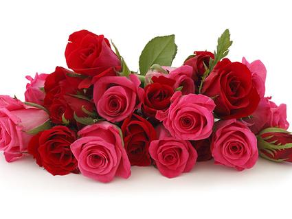 Фото цветы в поздравление