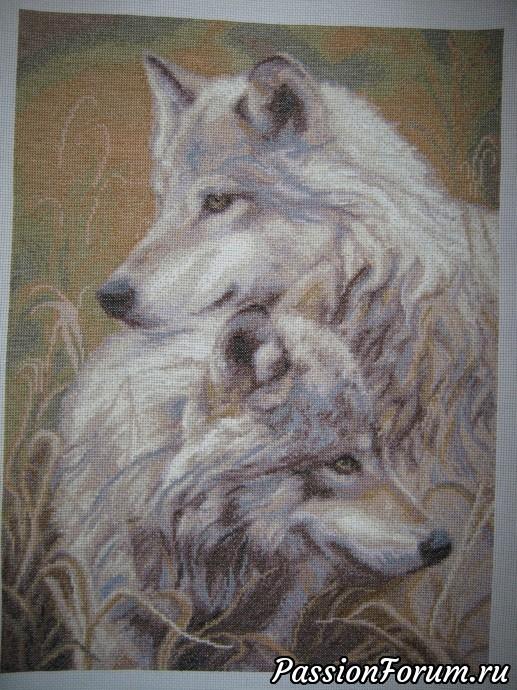 Волки на схемах вышивки крестиком 15